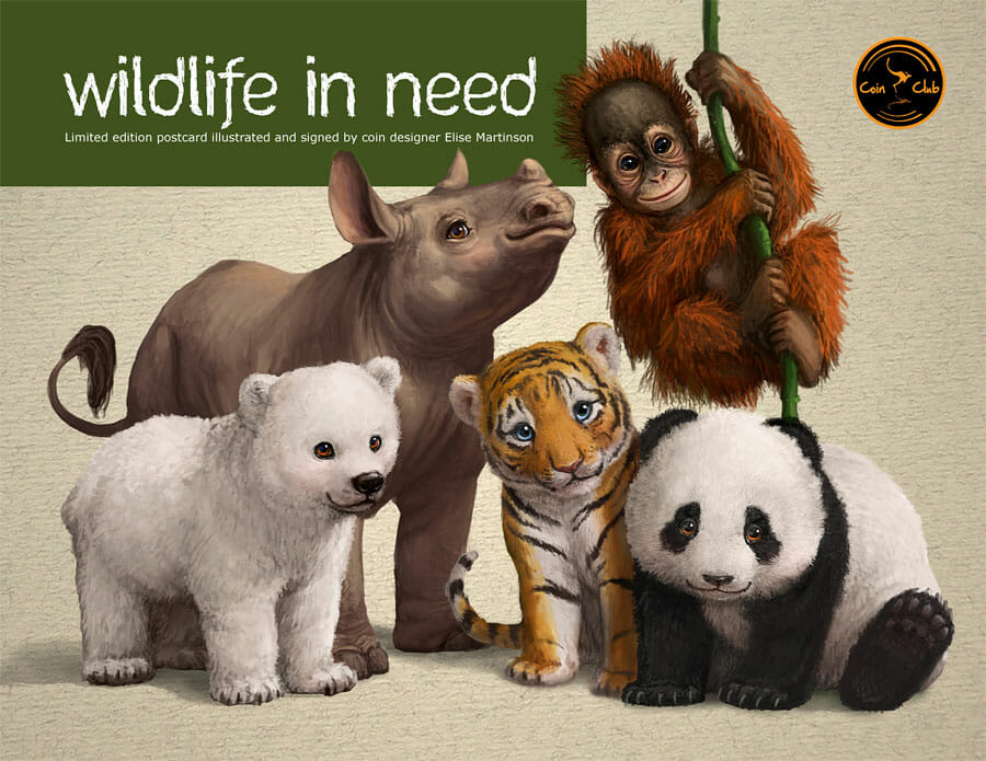 Wildlife in Need Postcard Illustration