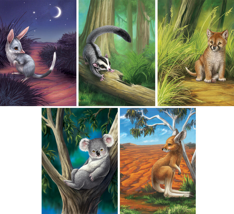 Illustrations for the Australian Bush Babies coin packaging