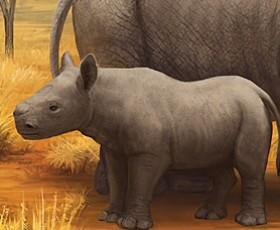 Wildlife in need: Black rhinoceros illustration