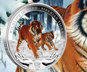 Correction to Wildlife in Need: Siberian Tiger coin details
