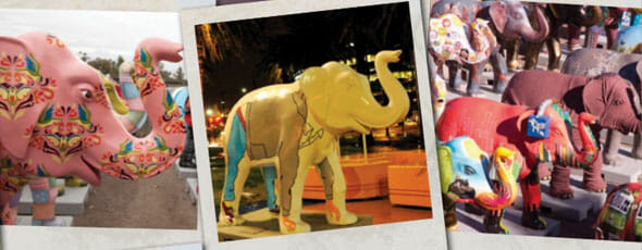 Elephants to go under the hammer