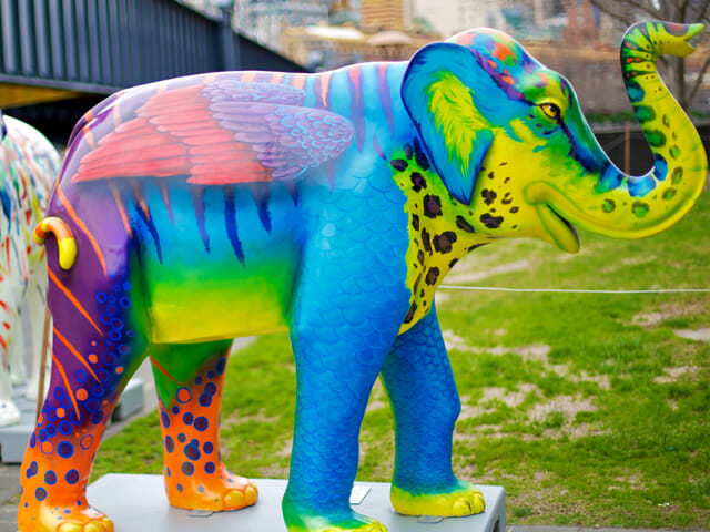 Mali in the City elephants